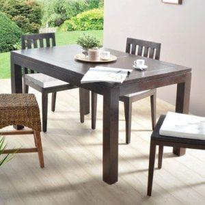 Table en acajou 160x90 papillon Actuo Aka